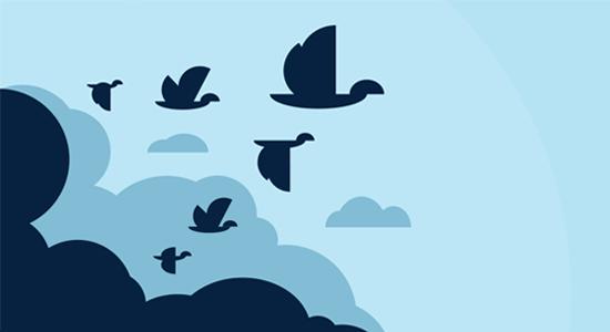 بهترین پلاگین های انتقال سایت وردپرس کدامند
