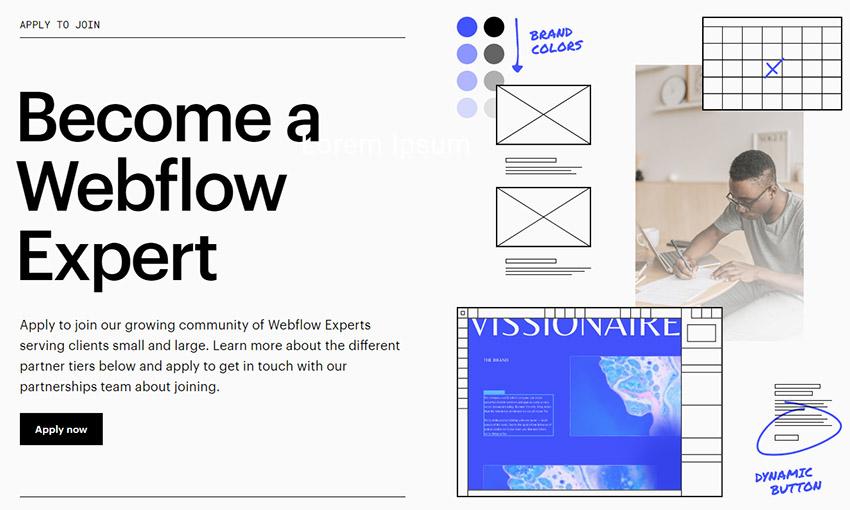 فریلنسر درآمد ارزی از سایت Webflow expert